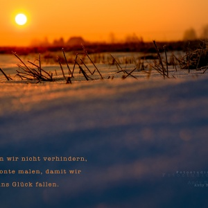 ab170128_fchreg_0150-2